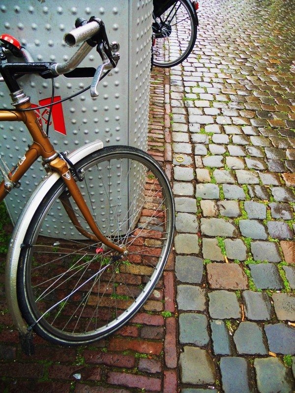 Bicycle--national symbol of the Netherlands :)